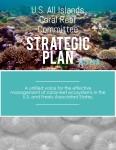 AIC Strategic Plan_COVER