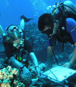 Studying coral reef in CNMI. Courtesy of CNMI DEQ.