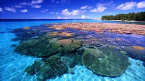 CoralReef_Majuro Atoll_FreeNaturePictures