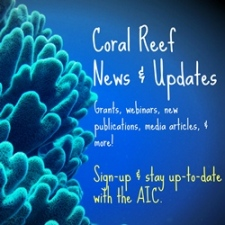 AIC News & Updates E-newsletter